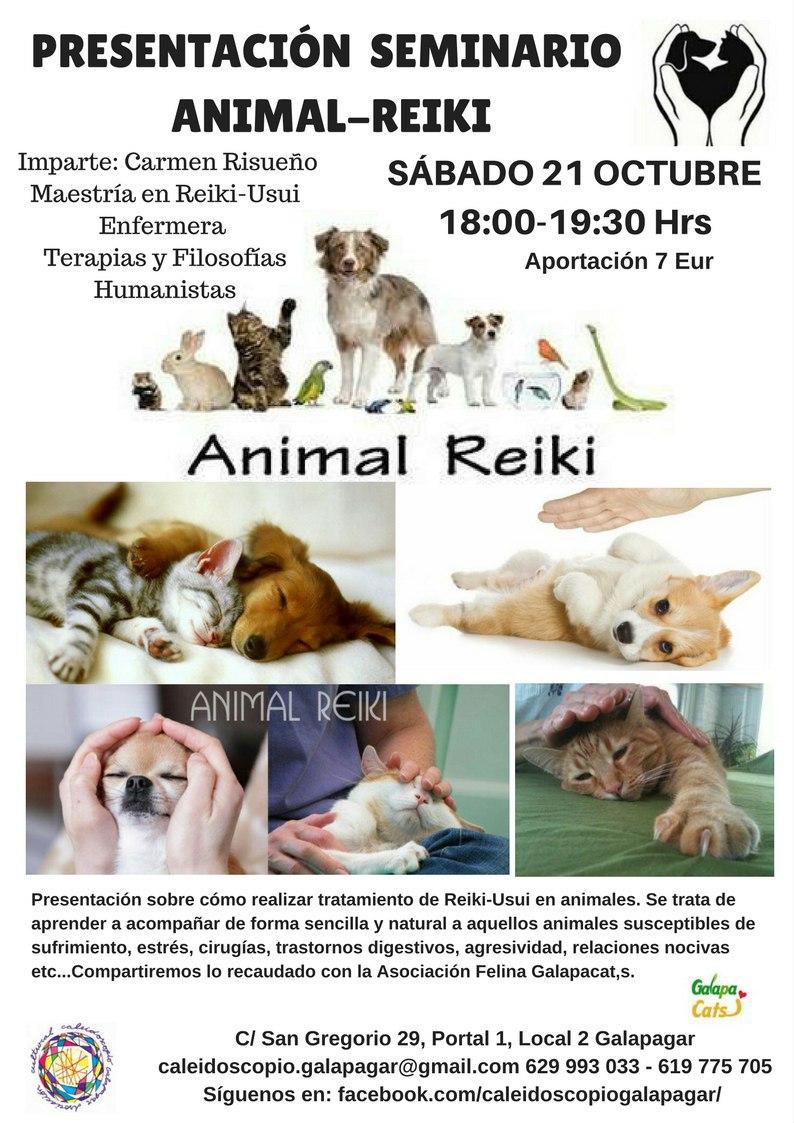 REiki-Animales